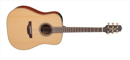 PRO SERIES 3 E/A DREADNOUGHT