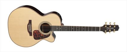PRO SERIES 7 E/A AUDITORIUM CUTWAY - NATURAL